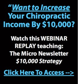 WEBINAR REPLAY - The Micro Newsletter $10,000 Strategy...